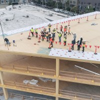 Mass Timber - Paving the Way to a Sustainable Future